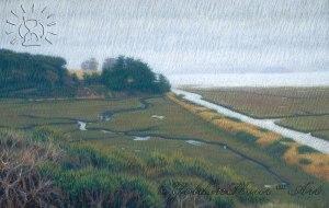 LandscapeWaterways2